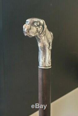 Canne de Marche Argent Art Nouveau. Decor pommeau chien Vintage Sterling Silver
