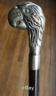 Canne de Marche Argent Art Nouveau. Vintage Sterling Silver Walking Stick